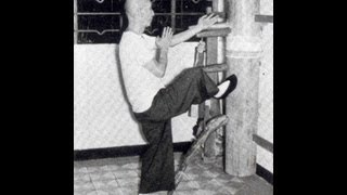 Wing Chun Ip Man Training And Forms Part 1