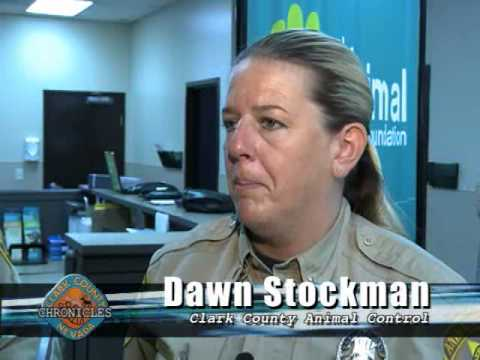 Hot Pets -  Clark County DA cracks down on animal cruelty