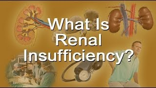 What Is Renal Insufficiency?