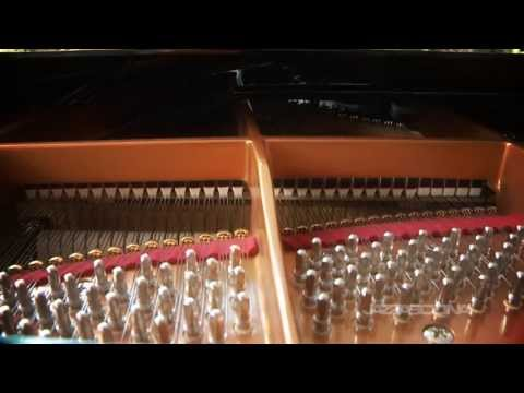 Tuning the Piano: Lucas Froelich - JazzAscona 2013