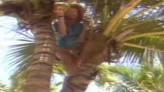 INTERNACIONAL ANOS 80'slaid Back Sunshine Reggae