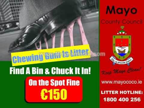 Mayo County Council environment Section 2013