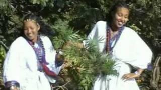 Shewaye Zuwale - Wello ወሎ (Amharic)