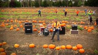 Punkin' Patch by Andy Z & The Beeheads