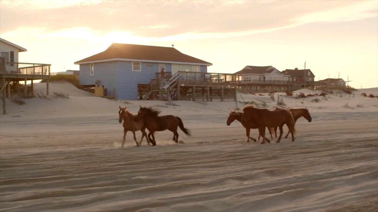 Featured Destination: Currituck Outerbanks, NC