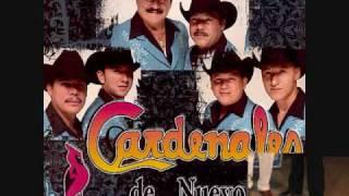Borrare tu nombre (audio) Cardenales de Nuevo Leon