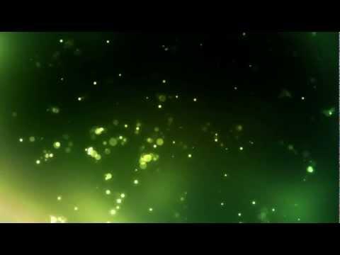 AmazonSwamp - FREE Video Background Loops HD 1080p
