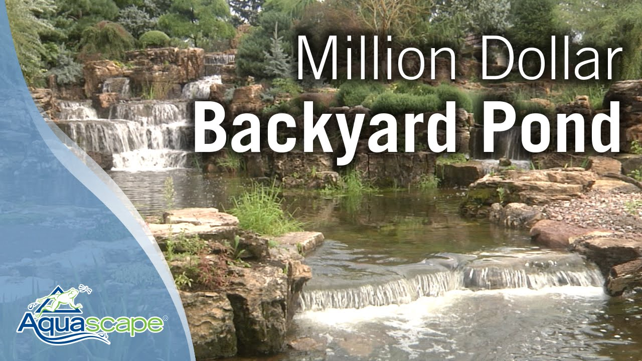 Million Dollar Backyard Pond