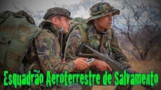Nesta edição você vai conhecer o PARA-SAR, o esquadrão de elite da Força Aérea Brasileira. A unidade, que completou 50 anos de existência, é composta por militares treinados para enfrentar as mais difíceis missões.