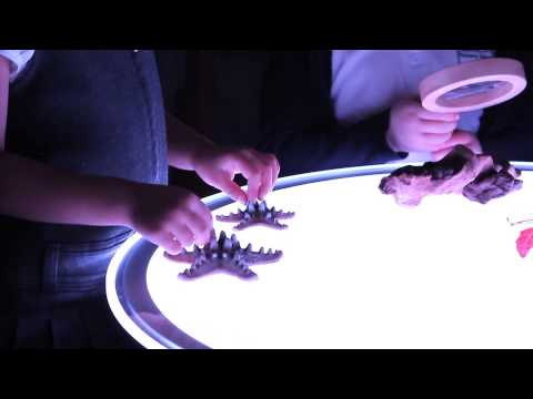 Colour Changing Round Light Panel*