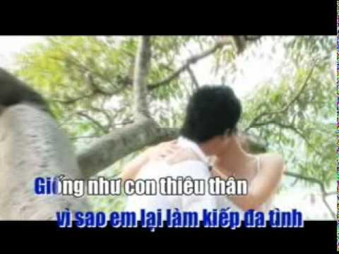 CAM BAY TINH YEU KARAOKE (mr.trần tiến)