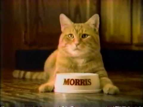 Morris Cat Food Commercial