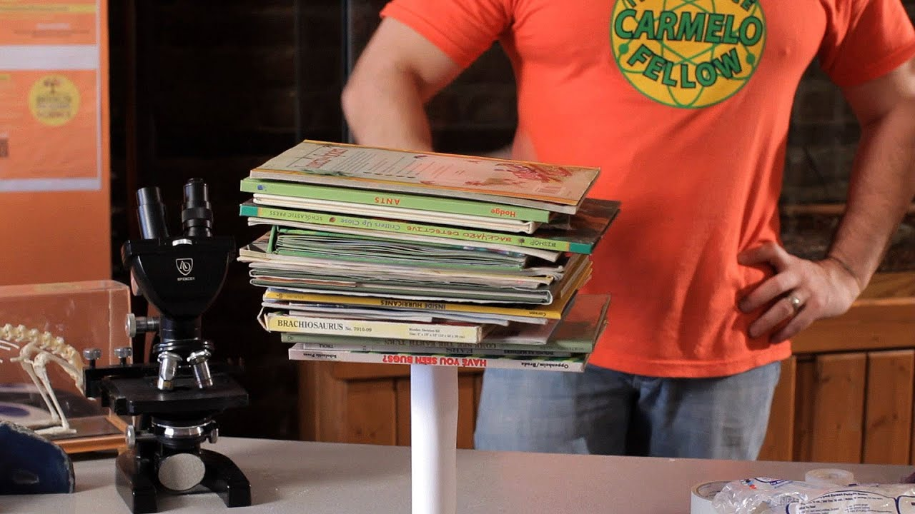 How To Do The Paper Book Tower Experiment Science