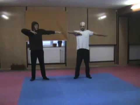 Tecktonik Tutorial 2011 Beginners Basic Moves by ETK