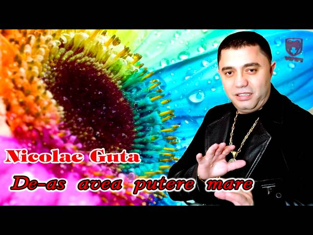 Nicolae Guta - De as avea putere mare