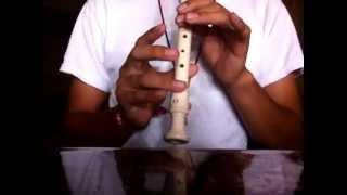 Flauta Dulce Plantas Vs Zombies Cancion De Batalla(Jardin