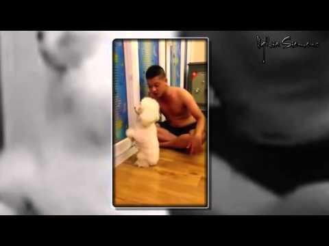 Thanh niên cứng dạy chó bá đạo vl