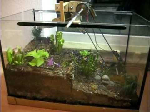 terrarium mit bewegung m rz 2009 youtube. Black Bedroom Furniture Sets. Home Design Ideas