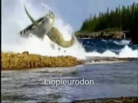 Megalodon Vs Liopleurodon - YouTube