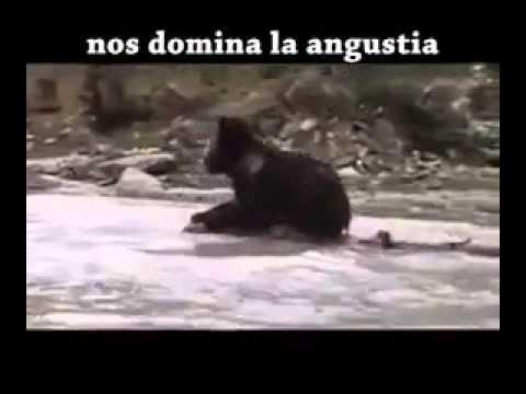 ESTE VIDEO CAMBIARA TU VIDA ES PARA LOS CRISTIANOS CATOLICOS QUE SE HAN ALEJADO DE DIOS