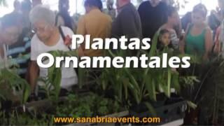 AGRO EXPO NACIONAL COLOSO EN AGUADA 2014