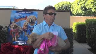 Super Buddies Dog Trainer