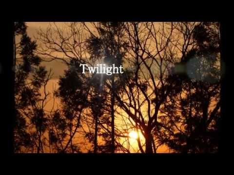 Twilight-The Band