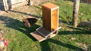 mangeoire pour poule survivalisme survivaliste videos de mangeoire clips de mangeoire. Black Bedroom Furniture Sets. Home Design Ideas