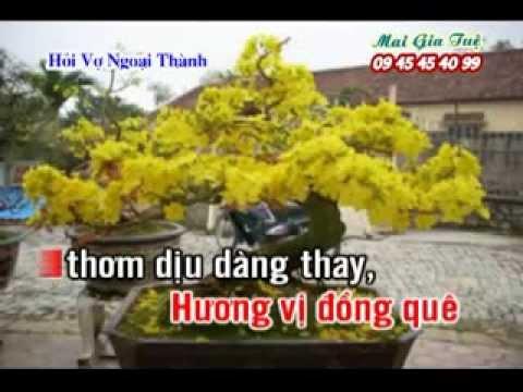 Hình ảnh trong video HOI VO NGOAI THANH [KARAOKE NHAC SONG 2014]
