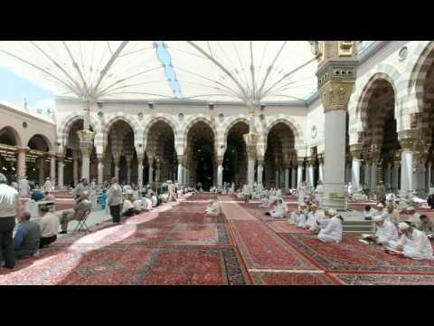 القرآن الكريم : سورة غافر Quran Translation -Ghamdi: Ghafir : 40