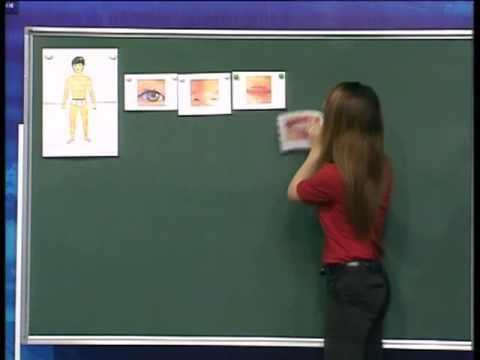 Dạy nnkh trên VTV2:Bài 6-Bộ phận cơ thể & các hoạt động thường ngày