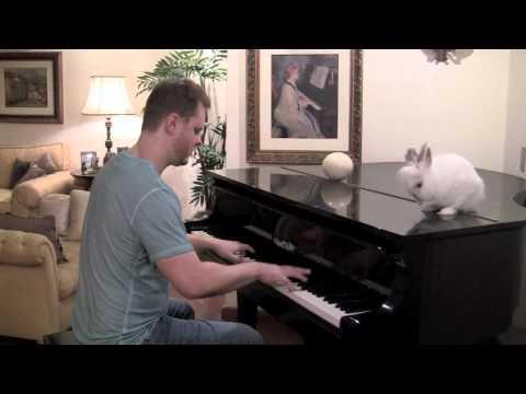 Coelhinho da Pascoa - Música Infantil