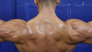 5 Exercises for HUGE Shoulder Gains
