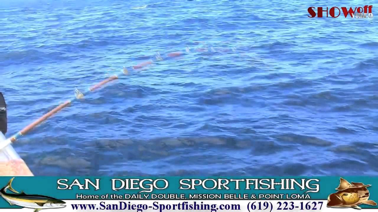 San diego sportfishing on mission belle point loma and for Point loma fishing