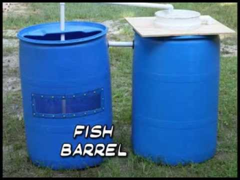 Recirculating Aquaculture System Made from Barrels (Barrelponics)