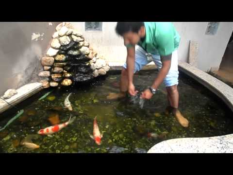 Lago ornamental, cliente da toca do Coelho, sr: Marcos Buchala