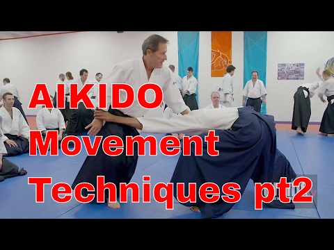 AIKIDO Movement Techniques Christian Tissier pt2