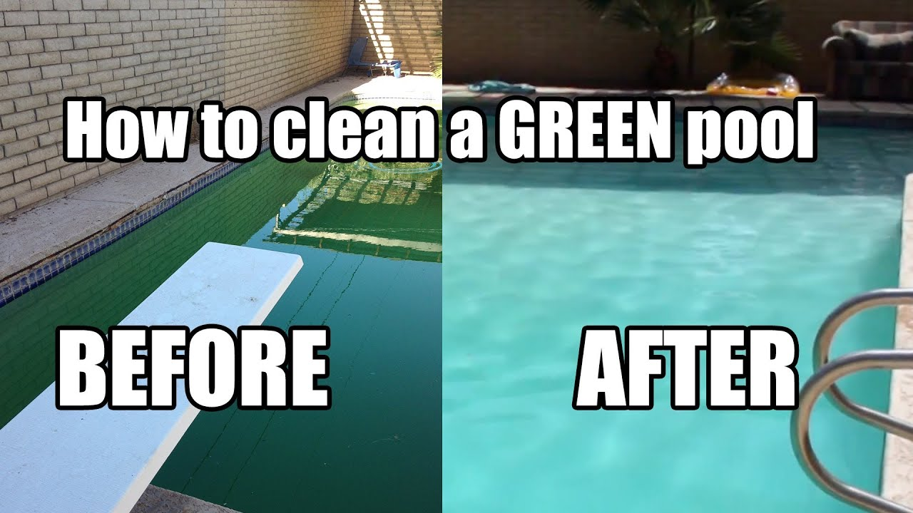 Removing Green Algae Swimming Pool : How to clean a green pool youtube