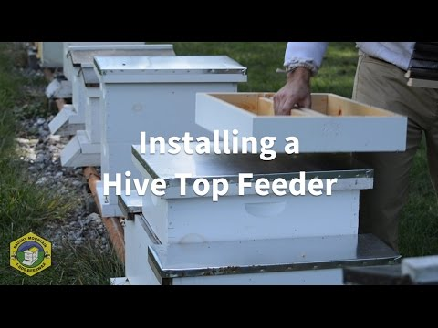 Installing a Hive Top Feeder
