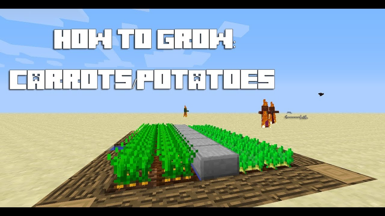 how to grow in minecraft