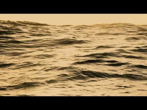 télécharger Ben Howard – Old Pine