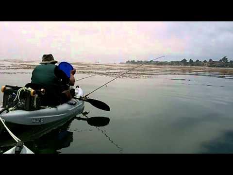 for Kayak fishing tournaments near me