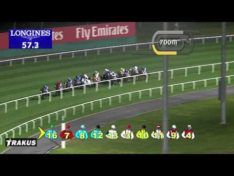 Vidéo de la course PMU GULF NEWS