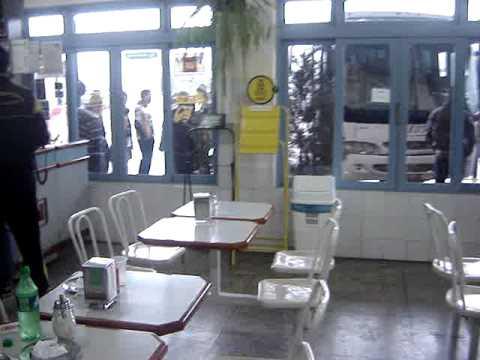 Os tigres na lanchonete em Torres