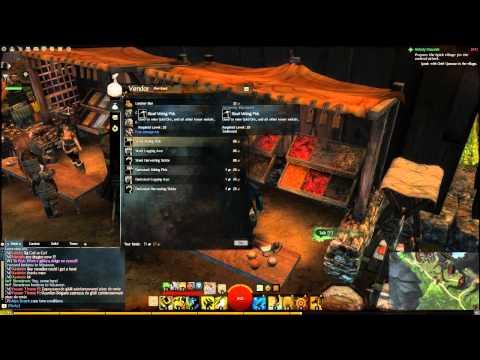 Guild Wars 2: ответы на вопросы новичка непосредственно в игре