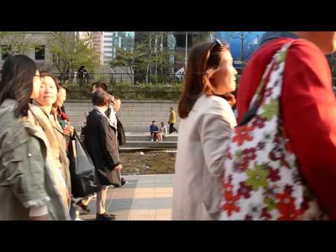 Six Months In Korea: The Cheonggyecheon Stream