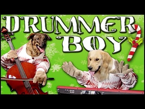 Little Drummer Boy - Walk off the Earth (Feat. Doggies)