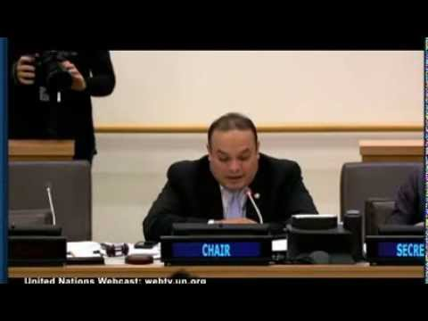 Hot mic catches UN interpreter saying anti-Israel votes are 'a bit much'