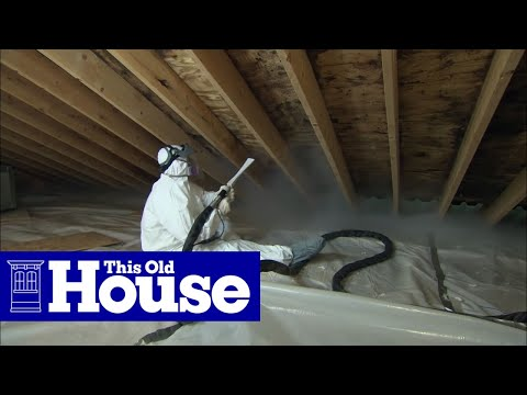 Handyman Get Rid Of Mold On A Wood Floor Worldnews Com