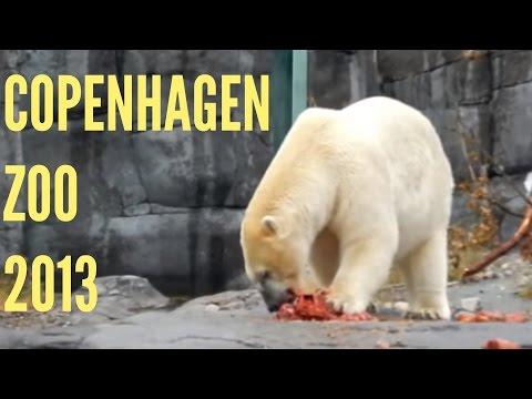 Life in Copenhagen: Copenhagen Zoo
